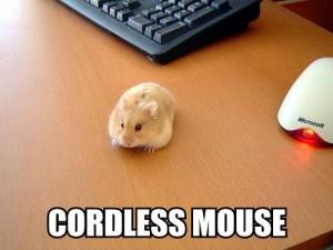 cordless-mouse-300x225